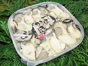 三栄の殻付き牡蠣セット